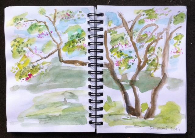 Croquis, Au jardin Vauban le 30 avril 2014, aquarelle, dessin, végétaux