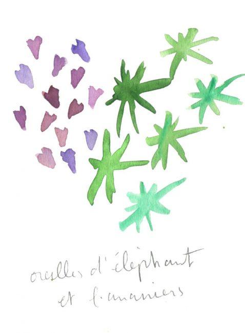 Oreilles d'éléphant - Motif végétal - Aquarelle