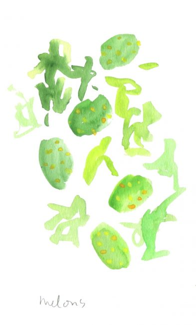 Melons - motif végétal - Aquarelle